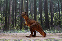 Tyrannosaurus Layout sample image for DSF-006N